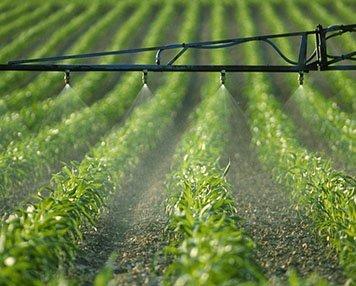 zirconia ball for pesticide