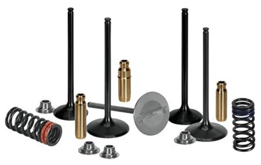 Motorcycle engine exhaust valves